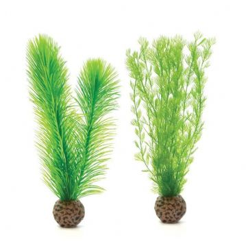 Biorb Feather Fern Set